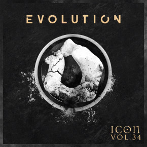 EVOLUTION_ICONVOL34_2 small